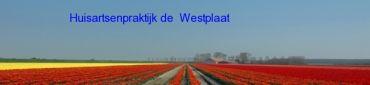 Westplaat